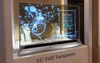 Oled transparent screen