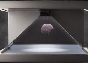hologram brain