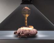 Holographic-cobra-in-a-dreamoc